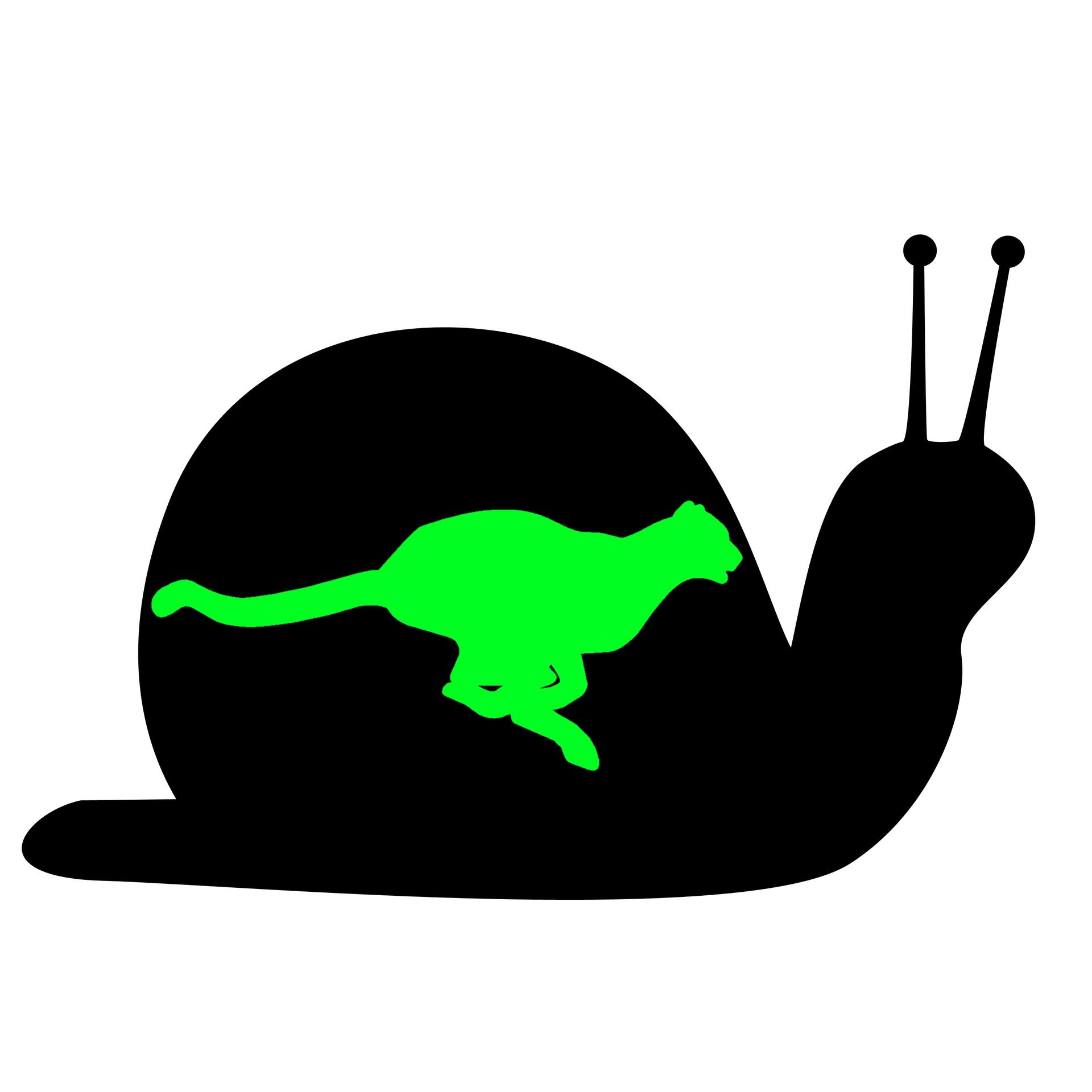 A Faster Computer - Guaranteed - Snail Cheetah Image